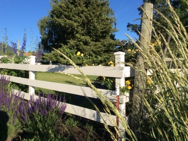 sneak peek at the secret garden